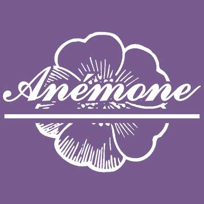 Anemone |  Blog for women's and girl's